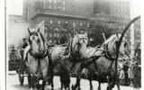 Jubilee Parade 1936